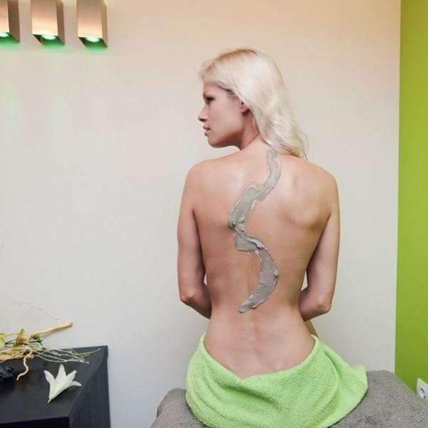 GlinaSi Pripravljena glina za obloge telesa
